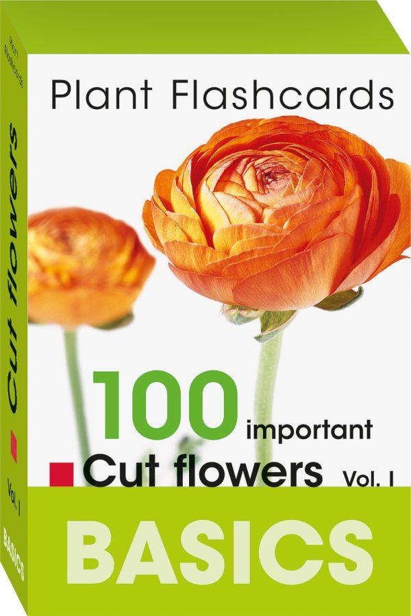 Basic plant flashcards cut flowers snijbloemen bloemen planten informatie uitleg botanische naam bloeiperiode leren bloemist florist bloemenwinkel boeketten bloemenfamilie proteaceae Bloom's kaarten Fleur Magazine Fleur Creatief