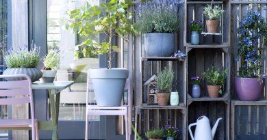 balkon en terras planten
