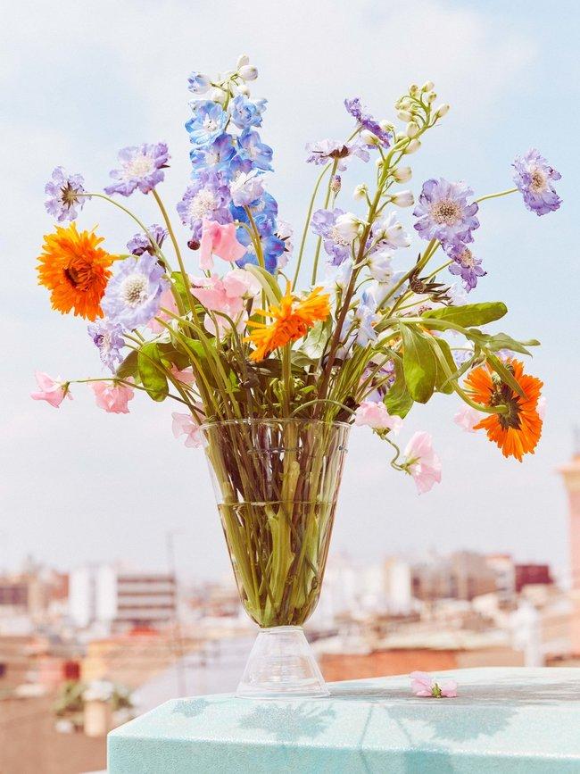 Zomer ademt bloemen Mooiwatbloemendoen.nl