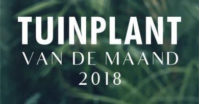 tuinplant van de maand 2018
