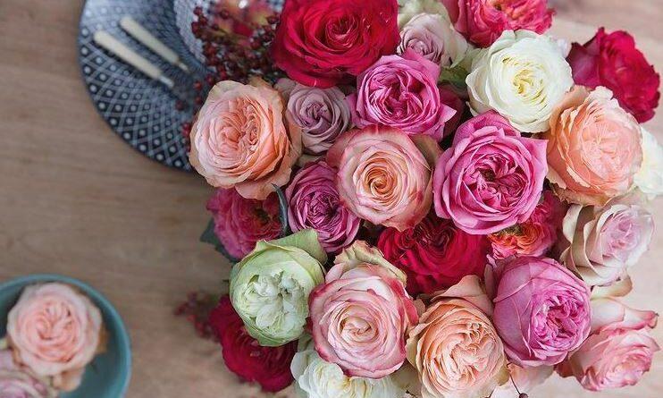 ©Decofresh Roses
