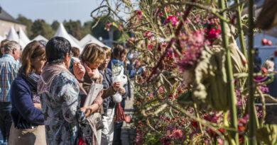FLEUR Creatief en FLEUR PRO Magazine: Deze florale blikvangers ontdek je binnenkort op het bloemenfestival Fleur Floral Fashion. Als bloemenliefhebber mag je deze bijzondere editie van Fleuramour niet missen!
